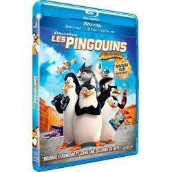 Animation Les pingouins