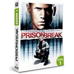 Série prison break saison 1